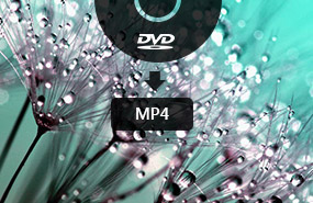 DVD in MP4 umwandeln