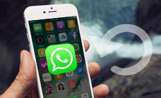 WhatsApp vom iPhone wiederherstellen